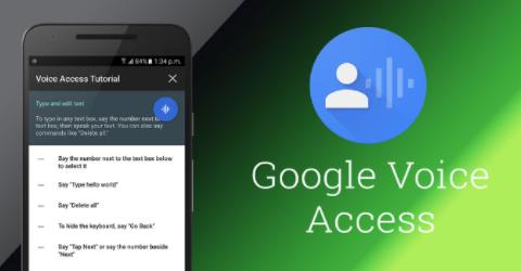 Google Voice Access